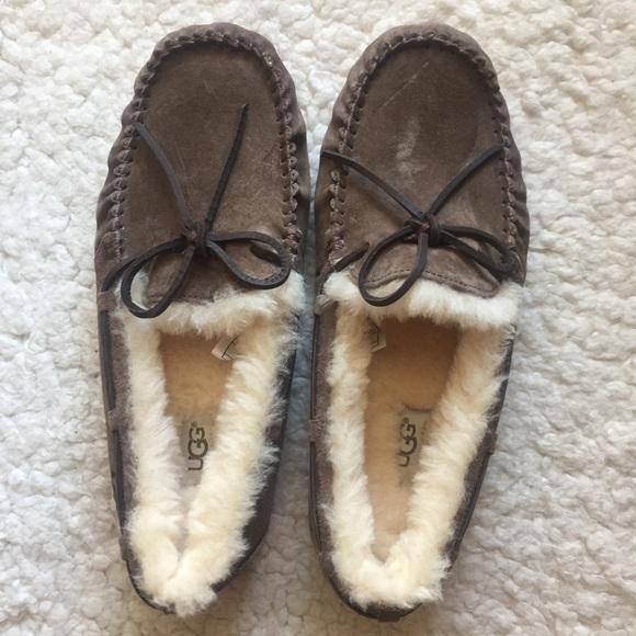 c53188cc5b1f New UGG Pure wool Dakota Espresso slippers